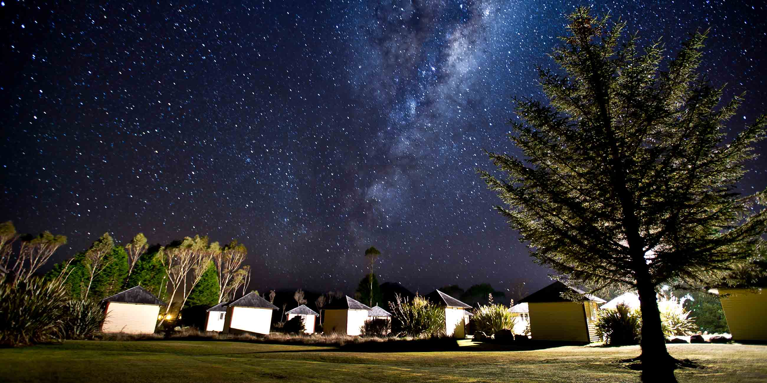 A row of Discovery Lodge camping huts surrounded by trees with the Milky Way shining above