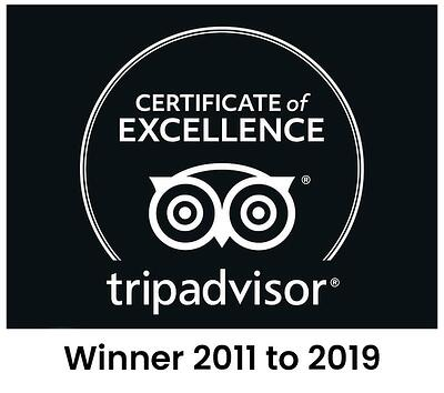 Tripadvisor Certificate of Excellence badge for Discovery Lodge Tongariro