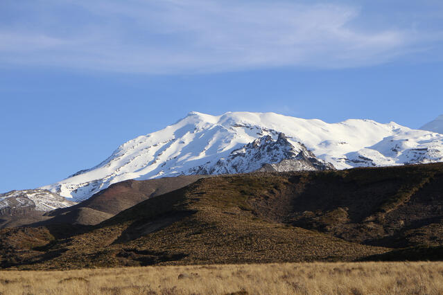 Mt Ruapehu & Tussock