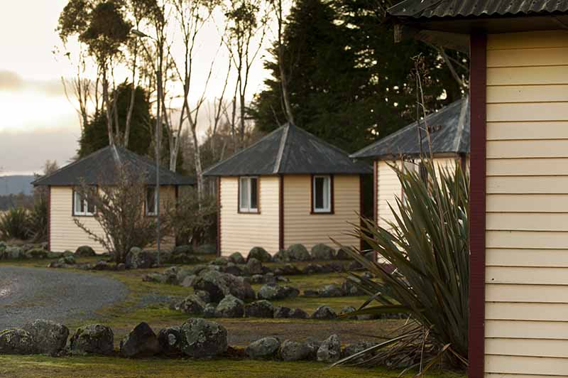 Discovery Lodge camping huts surrounded by trees at Tongariro National Park