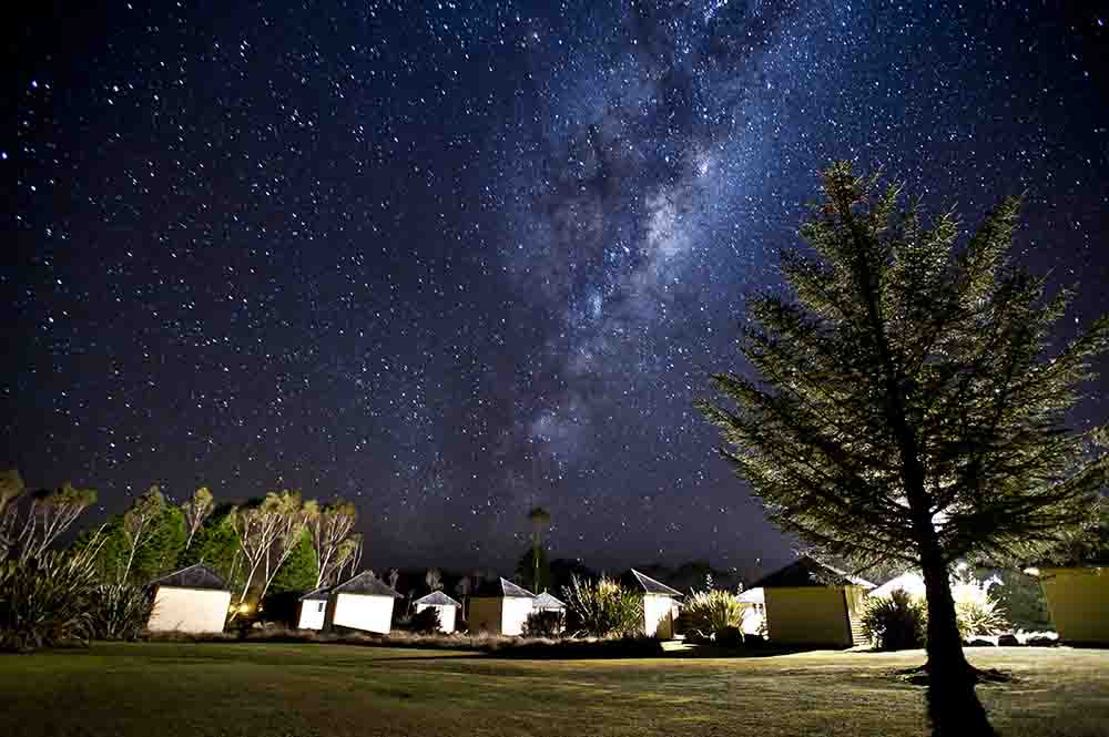 A row of camping huts surrounded by trees and the Milky Way above