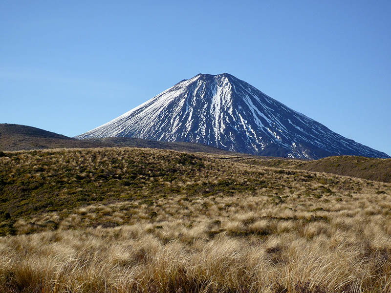 The active volcano of Mt Ngauruhoe with blue sky and golden tussock grass